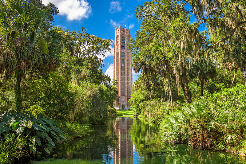 Bok Tower Gardens are set in acres of stunning greenery, One of the wonderful attributes of the gardens is their wildlife population, which includes as many as 126 different species of birds. The grounds of Bok Tower Gardens are a designated site on the Great Florida Birding Trail.