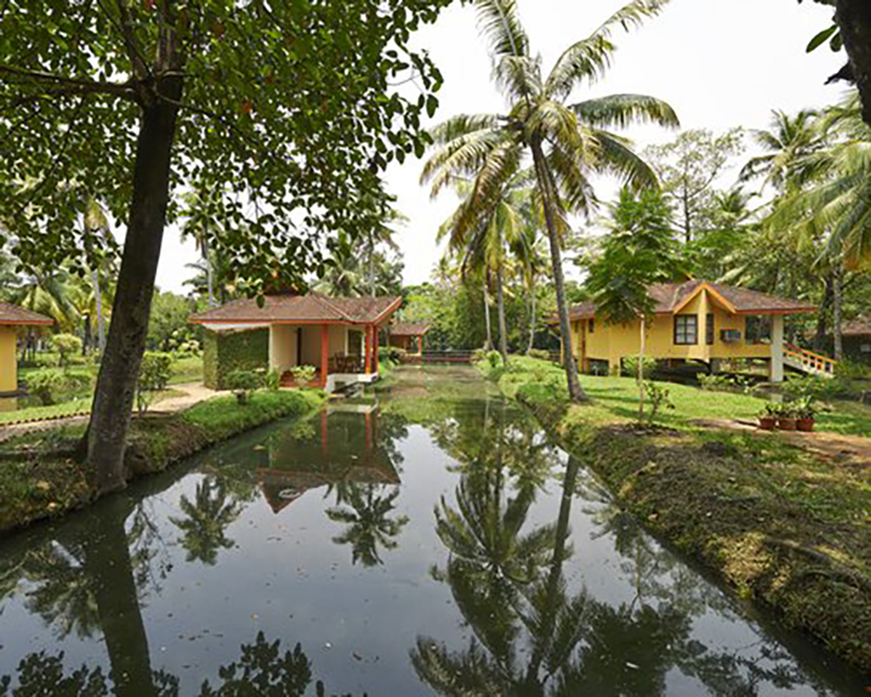 Club Mahindra Kumarakom (D459) nestles in the backwaters of the Vembanad Lake, among meandering canals and paddy fields. Designed using Kerala architecture with rustic pathways and bridges, the villas are built on stilts over the canals. The resort's 'Svaastha spa', an Ayurvedic Centre, treats you to traditional massages.