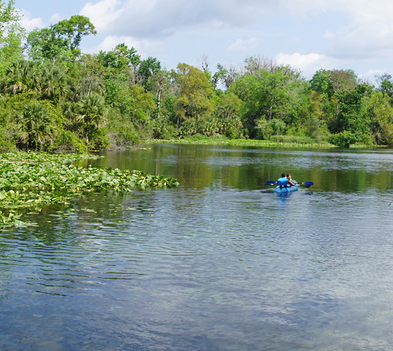Wekiwa Springs State Park is just minutes from Downtown Orlando and has trails for hiking and biking and emerald waters for swimming and kayaking. Look out for native animals such as manatees, alligators and otters.