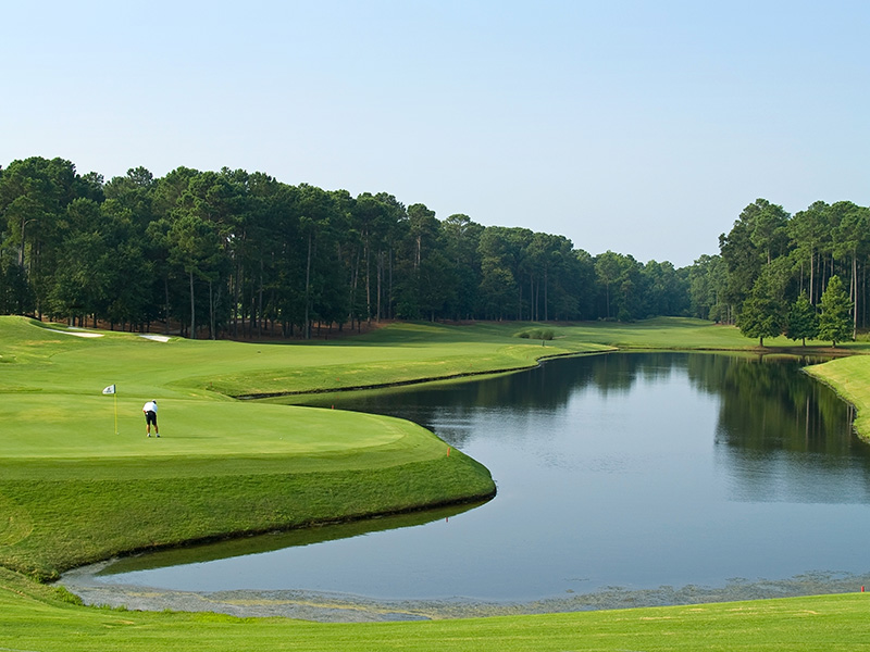 It's hard to believe that there are as many as 80 award-winning golf courses in the wider Myrtle Beach area, so close to all the seaside delights and yet so different!
