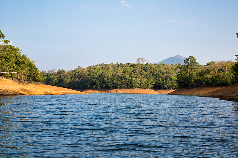 The tropical paradise, by the edge of the Neyyar Dam Lake and set among the foothills of Kerala's Western Ghats, was home to Sarah for the several weeks she took herself off to practice yoga as it had been done in ancient times - in perfect isolation.