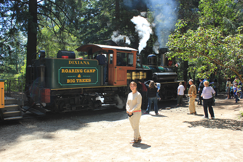 The Roaring Camp & Big Trees Narrow Gauge Railroad is one of those attractions that you need to experience. The old steam train travels through a redwood tree forest, which is very picturesque. Great for some picture opportunities!