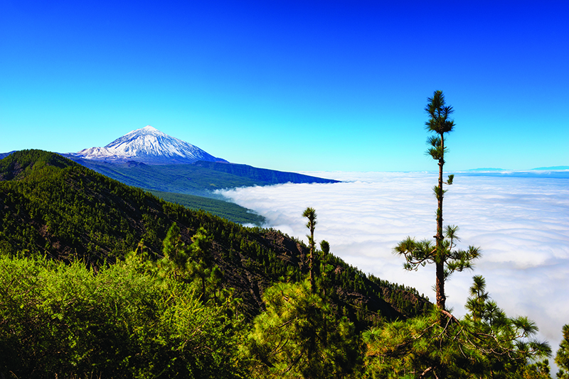 Keeping a watchful eye over Tenerife is Mount Teide. A short cable car ride takes you to the summit which offers spectacular views across the largest of the Canary Islands.
