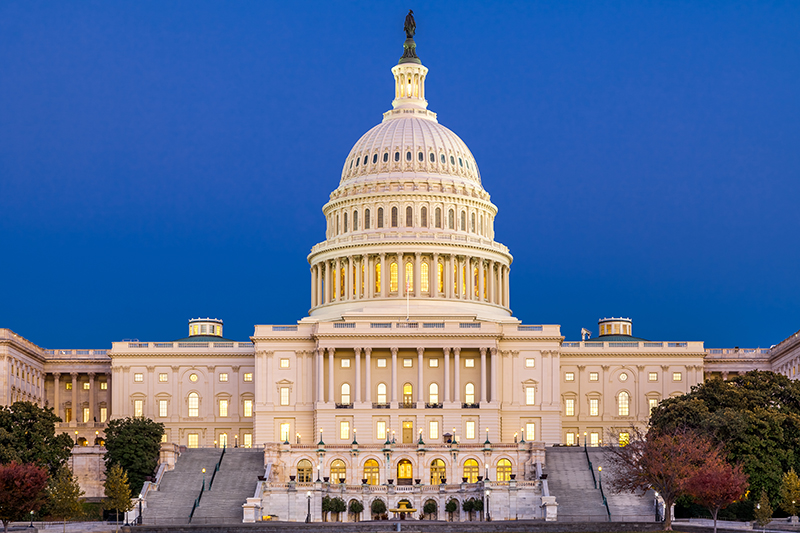 The Capitol Building is the hub of American politics. It is home to the United States House of Representatives and Senate, where America's laws are debated and bills passed.
