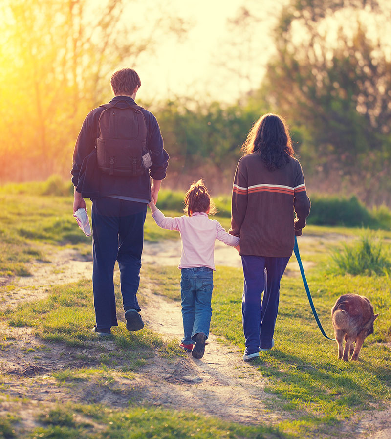 Spend your days exploring the surrounding countryside and taking your dog on long, leisurely walks.
