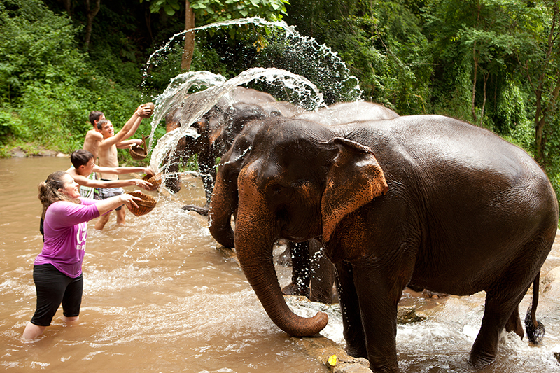 During an excursion, Cameron saw the 'real' Thailand, including local farming villages and bathing elephants cooling down in the heat.