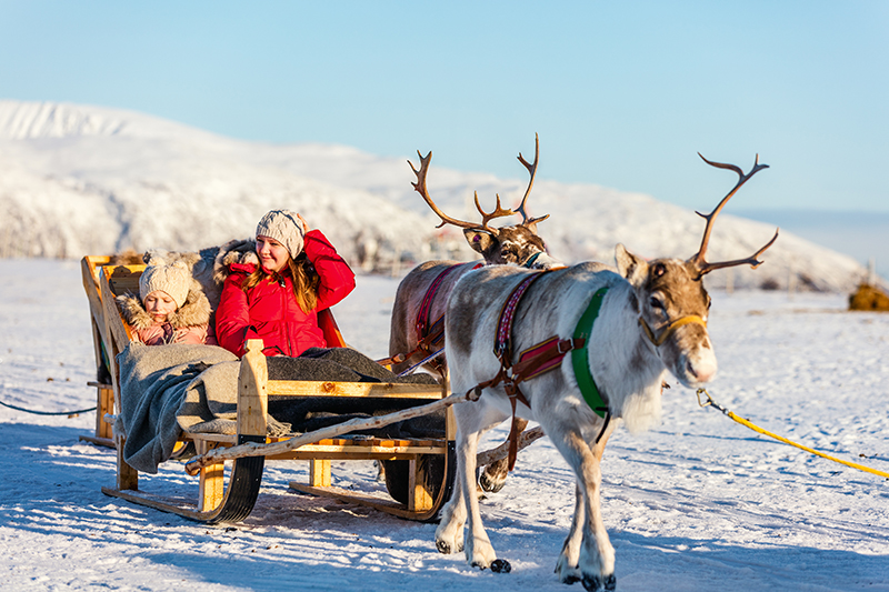 To get closer to the wildlife and enjoy the beautiful snowy landscapes, take a reindeer sleigh ride through the snow-covered forests and past the glistening frozen lakes.