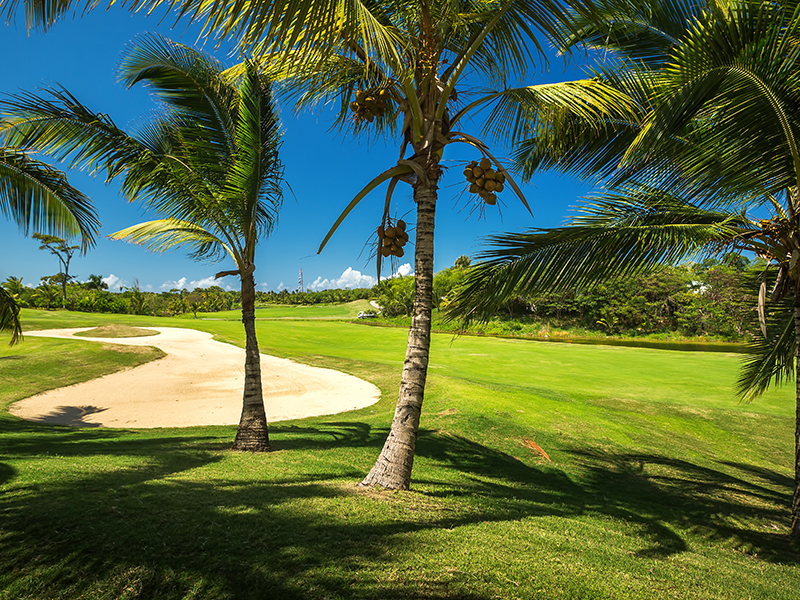 Punta Cana in the sizzling, sunny destination of the Domincan Republlic is good for golf as well as lounging by the pool, long cool cocktail in hand.