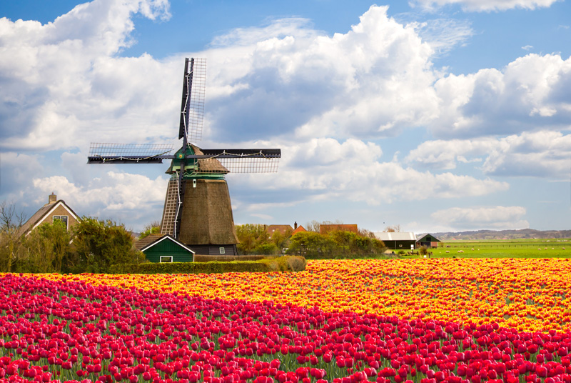 As there are likely more bikes in the Netherlands than anywhere else in the world, it would be silly to leave it out. Keukenhof in Lisse explodes with beautiful tulips every spring, so cycling during this time is the best.