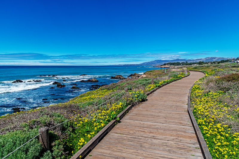 With spring bringing pretty wildflowers lining the boardwalk, Moonstone Beach is a beautiful detour on your Big Sur ride. The beach is flanked by rugged rocks and is one of the most incredible places to watch the sunset. A perfect end to the day.