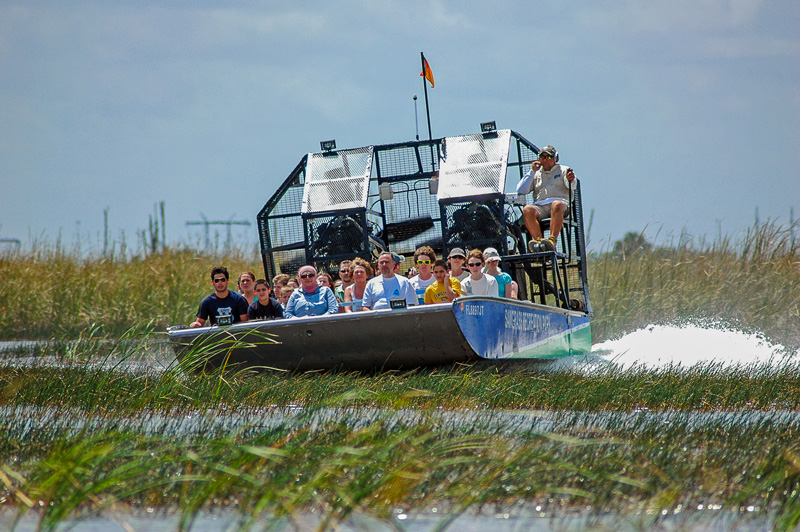 Visitors of Boggy Creek Airboat Rides are offered a rare glimpse of the abundant wildlife in their natural habitat in Florida.
