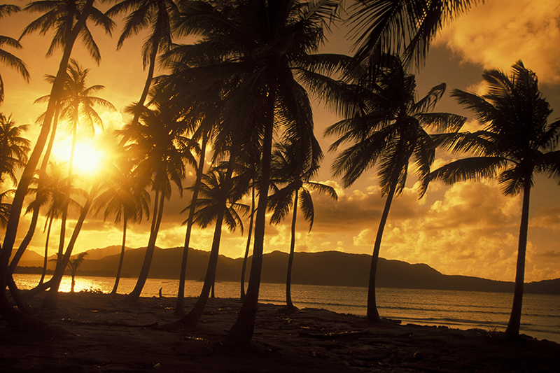 The Dominican Republic is a beautiful island paradise, perfect for a bit of rest and relaxation. While away the sunny days on the golden sandy beaches and spend the evenings tasting the delicious Caribbean cuisine.