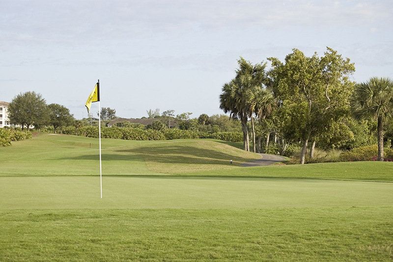 For golfers, Fort Myers is home to almost 50 courses so there are plenty to choose from if you decide teeing off is what you want to do on holiday. The Fort Myers Country Club comes highly reccommended.