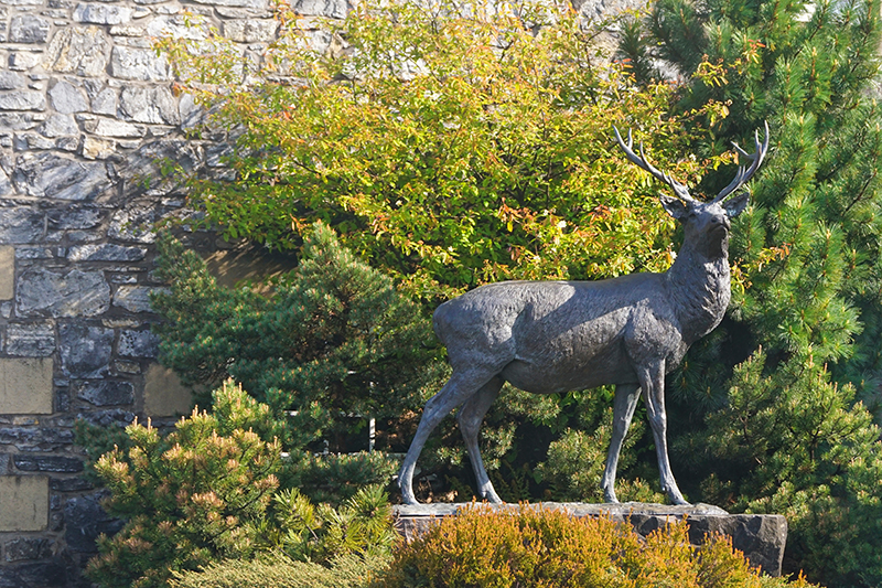 Glenfiddich stands for Valley of the Deer. The family-owned business was founded in 1886 and is still in the same location today.