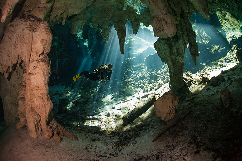 There are many fabulous cenote diving locations in Mexico. If you want the ultimate scuba diving experience, seek out the caves and rock formations of the underwater world, along with the local marine life - it will be an amazing adventure and one you will never forget!