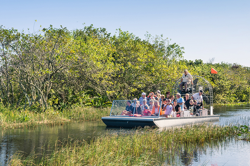 A trip to Florida is not complete without visiting the Everglades National Park. An airboat adventure that takes you gliding over the sawgrass and cattails is not to be missed - listen to the stories of this only-in-Florida environment.