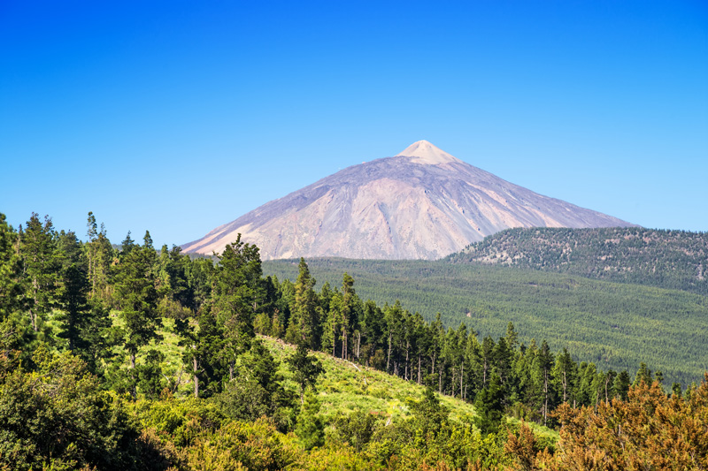 Tenerife's resident volcano - Mount Teide - is one of the island's biggest tourist attractions. Visitors flock to the Teide National Park to see the spectacular landscapes and some even do the trek on foot.