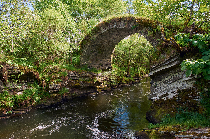Take the guided Glenvilet Hill Trek in the Scottish Highlands for breathtaking views, such as the babbling stream pictured above.