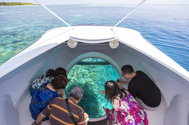 Look but don't touch! Keep your feet dry by exploring the beauty of Montego Bay's coral reefs on a glass-bottomed boat tour.