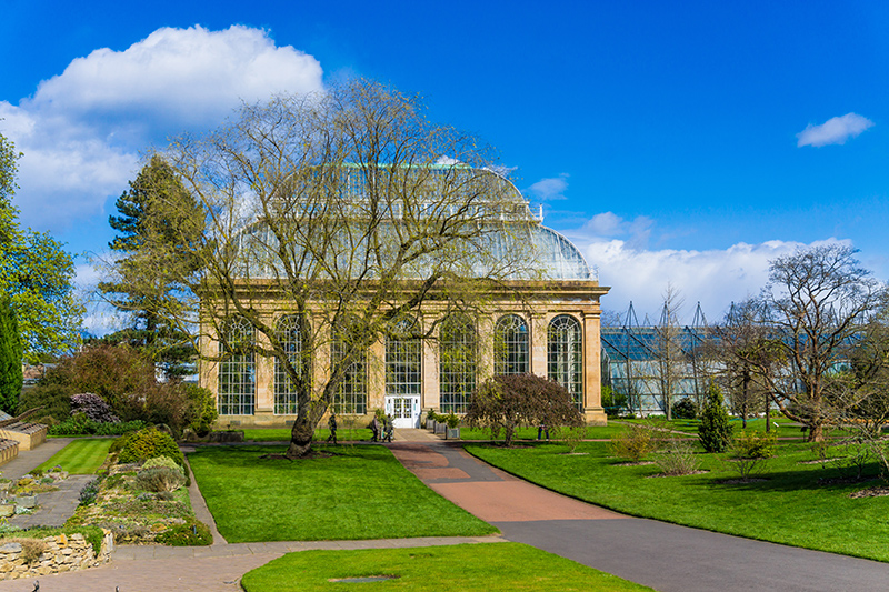 Venture a short way from the city to the Royal Botanic Garden of Edinburgh for a bit of peace and quiet. Explore the 70 acres of plants and glass houses full of exotic plants and flowers.