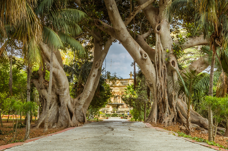 Enjoy the picture of serenity and peace at San Anton Palace and Gardens - used as a Game of Thrones filming location