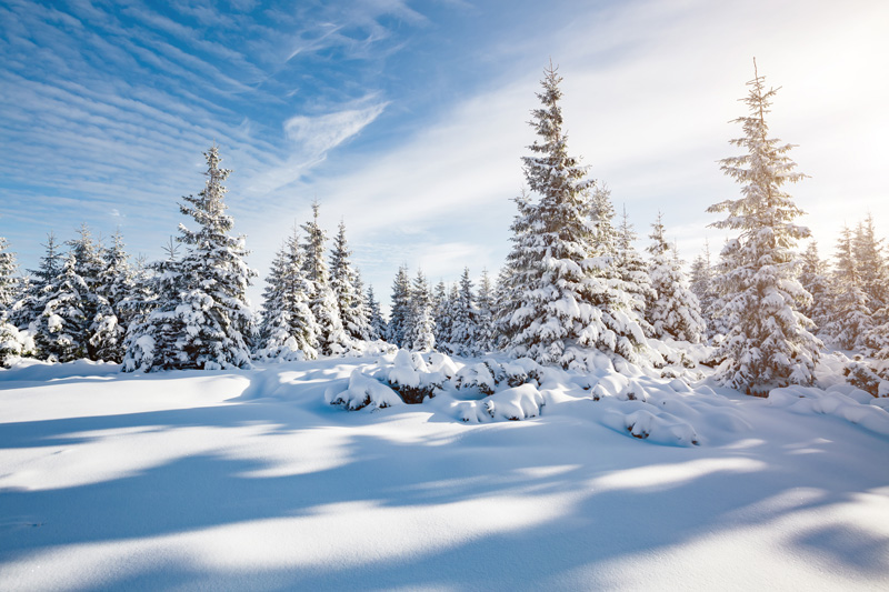 The snowy, mountainous landscapes make it a haven for skiing enthusiasts and one of the top destinations for snow sports. Finland really is a magical place - from Santa Claus to the Northern Lights and the endless snowy scenes - this is a beautiful country for your next holiday destination, especially a Christmas getaway.