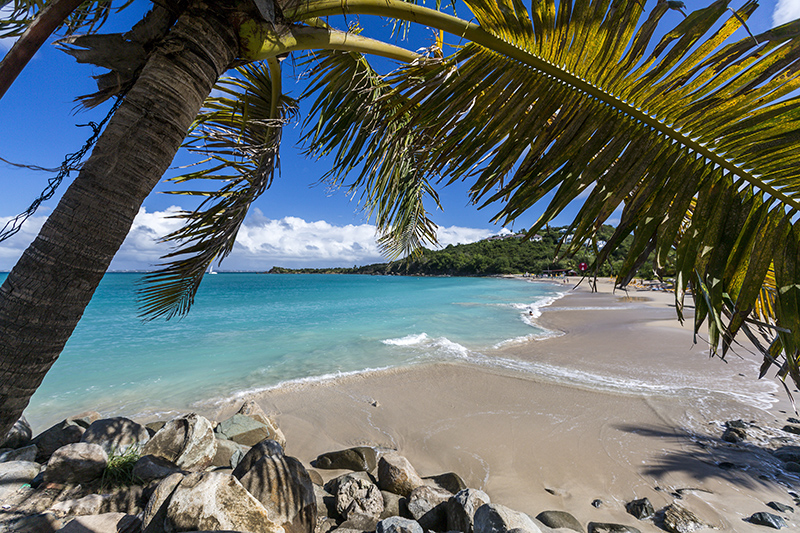 Saint Martin is a very popular Caribbean island, many cruise ships stop here.  Whether you want to go shopping for some vibrant gifts or relax with seafood and cocktails, the choice is yours.