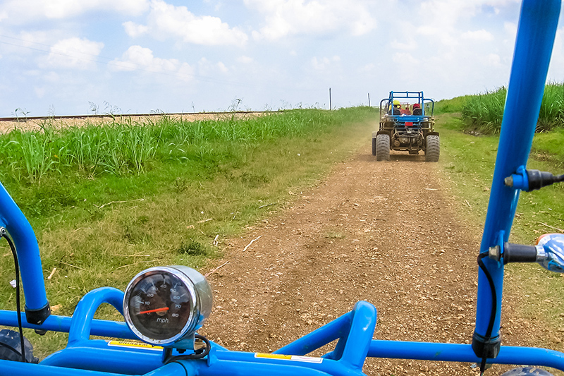 The Country Adventure Safaris on a Plantation Tour is a great way to see the Dominican Republic's beautiful countryside. It's also the perfect opportunity to try some of the locally grown produce along the way.