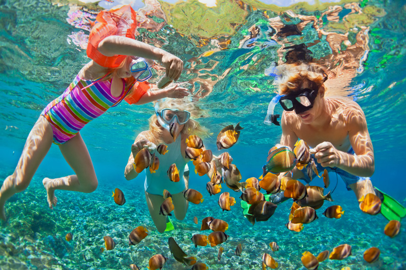 mexico is a great family holiday destination. The all-inclusive resorts are a great value way to holiday worth a family.