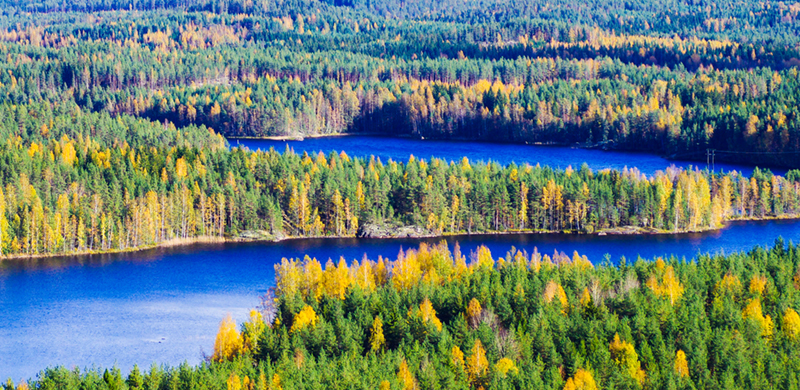 Finland, and Finnish Lapland, are blessed with beautiful stretches of water which means the visitor can take a boat trip out to view autumn's handiwork from the water.