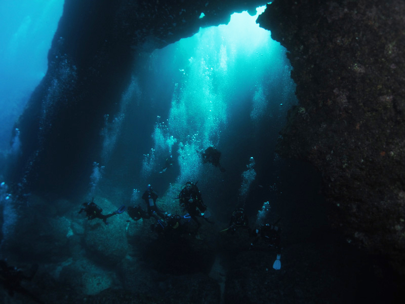 The Blue Hole is one of the world's most iconic diving sites and as it is a cave, it will be something a little different.
