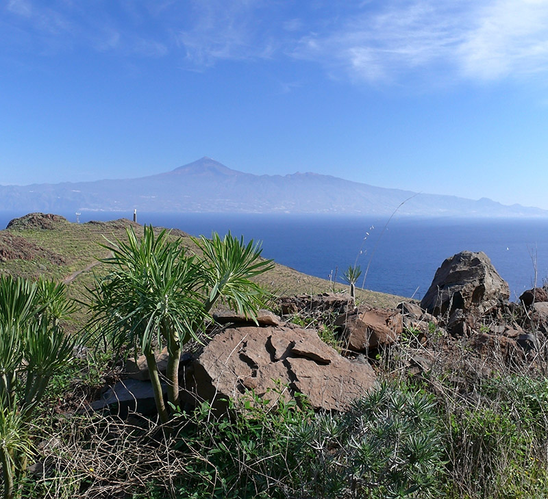 La Tecina, Golf Course, which is on the island of La Gomera, has one of the most beautiful views, with vistas over the sea to Tenerife's Mount Teide.